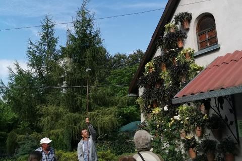 Šiaulių botanikos sodas gidas Martynas apie sodo augalus
